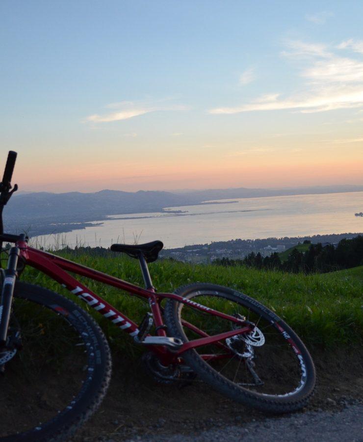 Fahrrad Bodensee